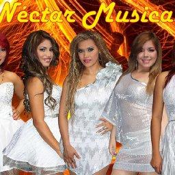 @nectarmusical